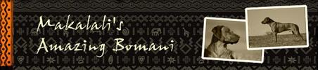 Makalali's Amazing Bomani